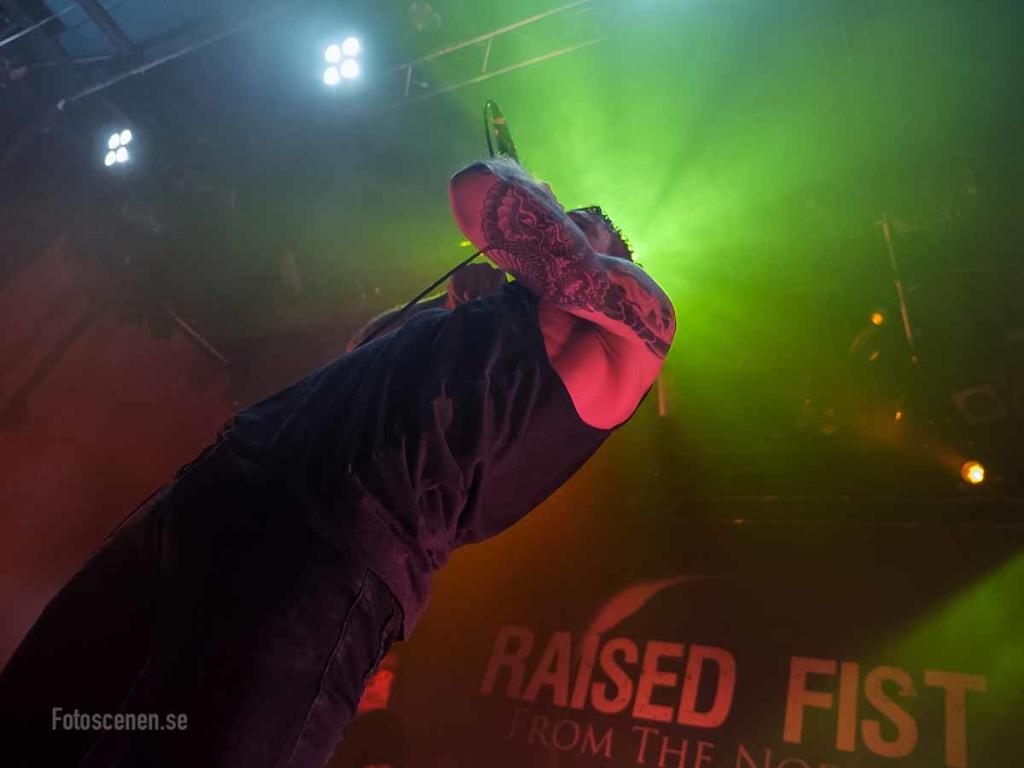 Trädgårn 2015 07 Raised Fist