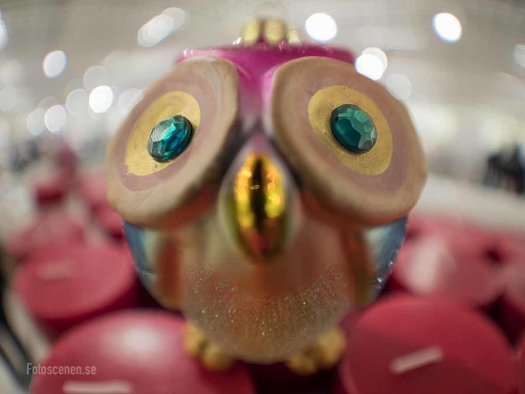 Fisheye 2015 02